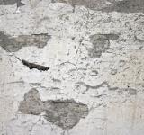 Free Photo - Concrete wall texture