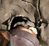 Free Photo - Rusted pipe in broken wall