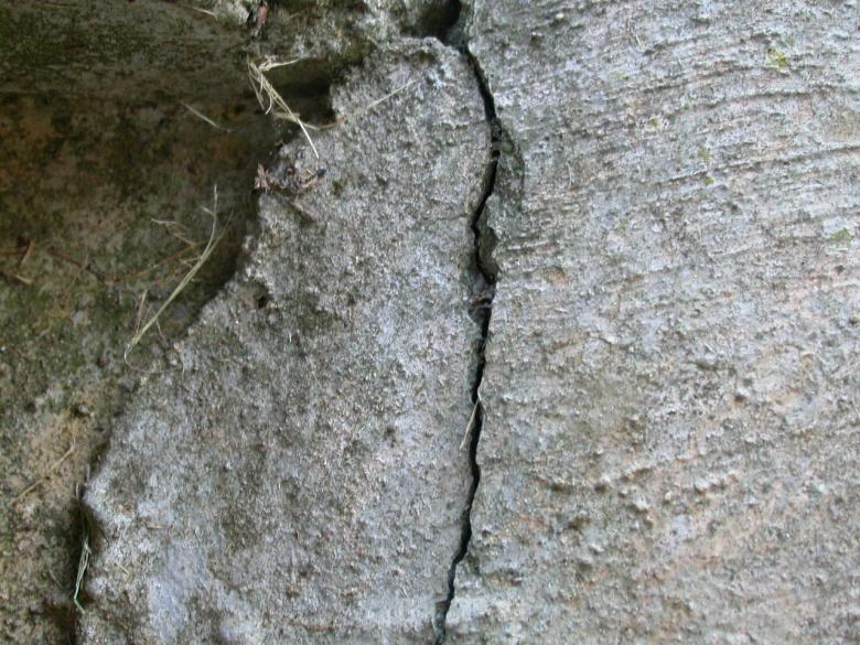 Free Stock Photo of Cracked Concrete Created by raymond henry