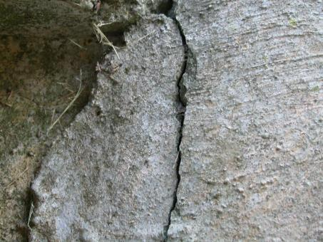Cracked Concrete - Free Stock Photo