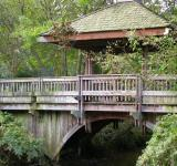 Free Photo - Wooden bridge