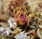 Free Photo - Dry flower decoration