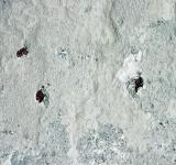 Free Photo - White concrete surface
