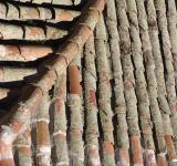 Free Photo - Roof tiles