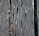 Free Photo - Wood plank with nails