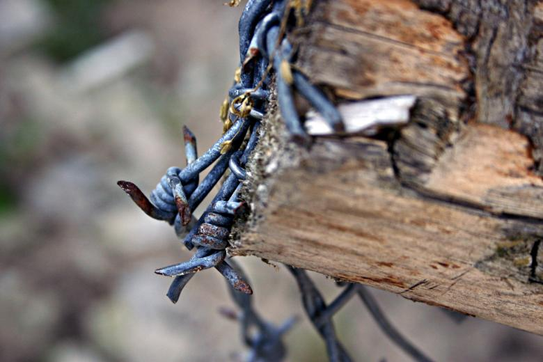 Free Stock Photo of Barbed wire closeup Created by Bjorgvin
