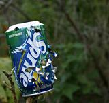 Free Photo - Sprite can with bullet holes