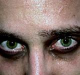 Free Photo - Green eyes