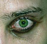 Free Photo - Green eye