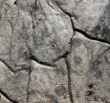 Free Photo - Cracked rock surface
