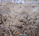 Free Photo - Dirt texture