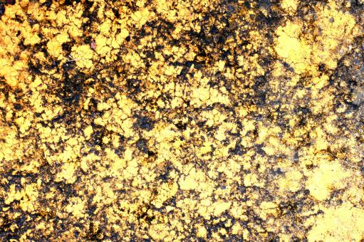 Golden cracked surface - Free Stock Photo