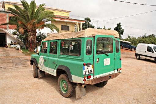 Green jeep from behind - Free Stock Photo