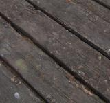 Free Photo - Wooden planks