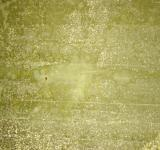Free Photo - Green dirty wall