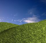 Free Photo - Green field