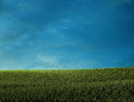 Green field - Free Stock Photo