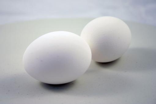 Two eggs - Free Stock Photo