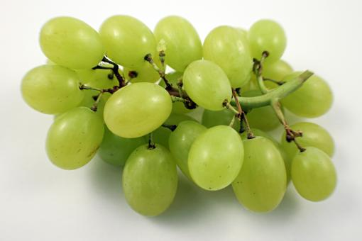 Green grapes - Free Stock Photo