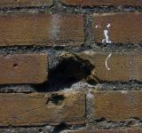 Free Photo - Cracked brick wall