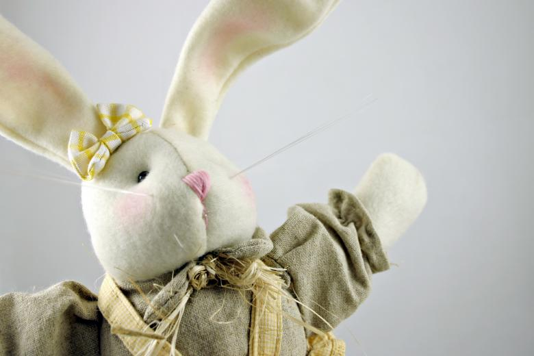 Easter rabbit Free Photo