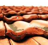 Free Photo - Red tiles
