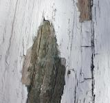 Free Photo - Cracked wood wall