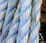 Free Photo - Blue rope