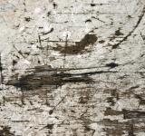 Free Photo - Scratched surface