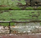 Free Photo - Painted wood texture