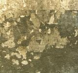 Free Photo - Peeled paint surface