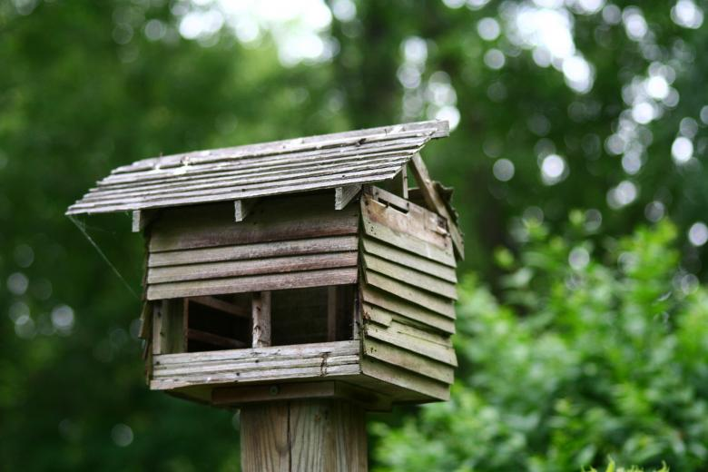 Free Stock Photo of Bird house Created by trevor henry