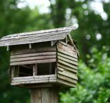 Free Photo - Bird house