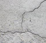 Free Photo - Cracked mud surface