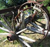 Free Photo - Carriage wheel