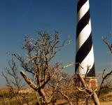 Free Photo - Cape Hatteras