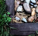 Free Photo - Bed of Rocks
