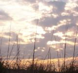 Free Photo - Sunrise over the Outer Banks