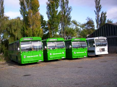 New Zealand is about green buses - Free Stock Photo
