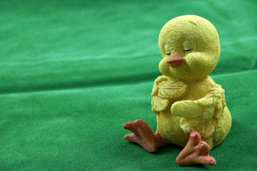 Sleepy easter chick - Free Stock Photo