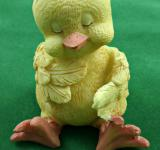 Free Photo - cute easter chick