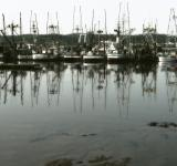 Free Photo - yaquina bay boats