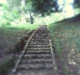 Free Photo - Stairway to heaven