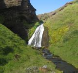 Free Photo - Icelandic waterfall
