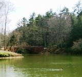 Free Photo - Biltmore estate bass pond
