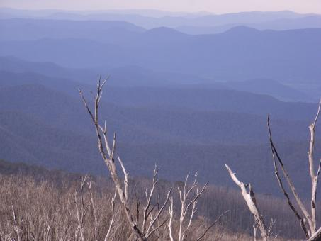 View form MT Bogong - Free Stock Photo