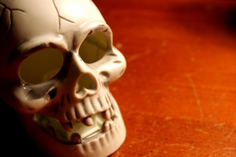 Free Stock Photo of Skull Created by Darren Hester