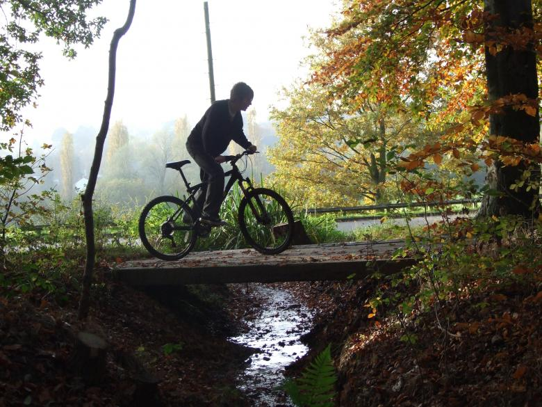 Free Stock Photo of Cycling through the forest Created by Joe Shannon