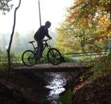 Free Photo - Cycling through the forest