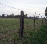 Free Photo - Barbed wire fence